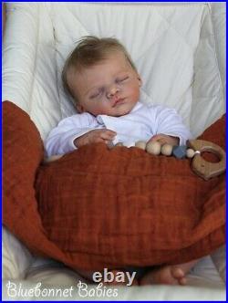 Bluebonnet Babies REBORN DollNewborn Baby Linus RARE SOLE Gudrun Legler
