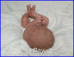 LE Reborn Collectable Baby doll art Newborn Jasmine Daegan Boy/Girl