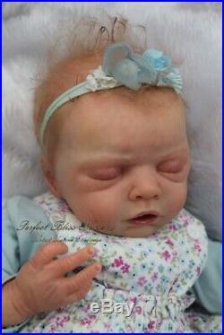 Pbn Yvonne Etheridge Reborn Baby Doll Sculpt Angelina By Angela Degner 0120