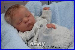 Pbn Yvonne Etheridge Reborn Doll Baby Boy Luxe By Cassie Brace 0418