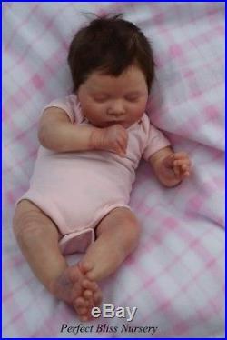 Pbn Yvonne Etheridge Reborn Doll Girl Sculpt Laila By Bountiful Babies 0118