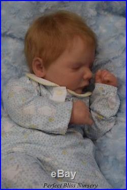 Pbn Yvonne Etheridge Reborn Doll Realborn Reese Asleep By Bountiful Baby 0118
